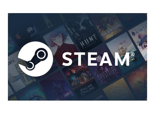 Steam aufladen