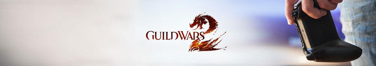 Guild Wars 2 opwaarderen